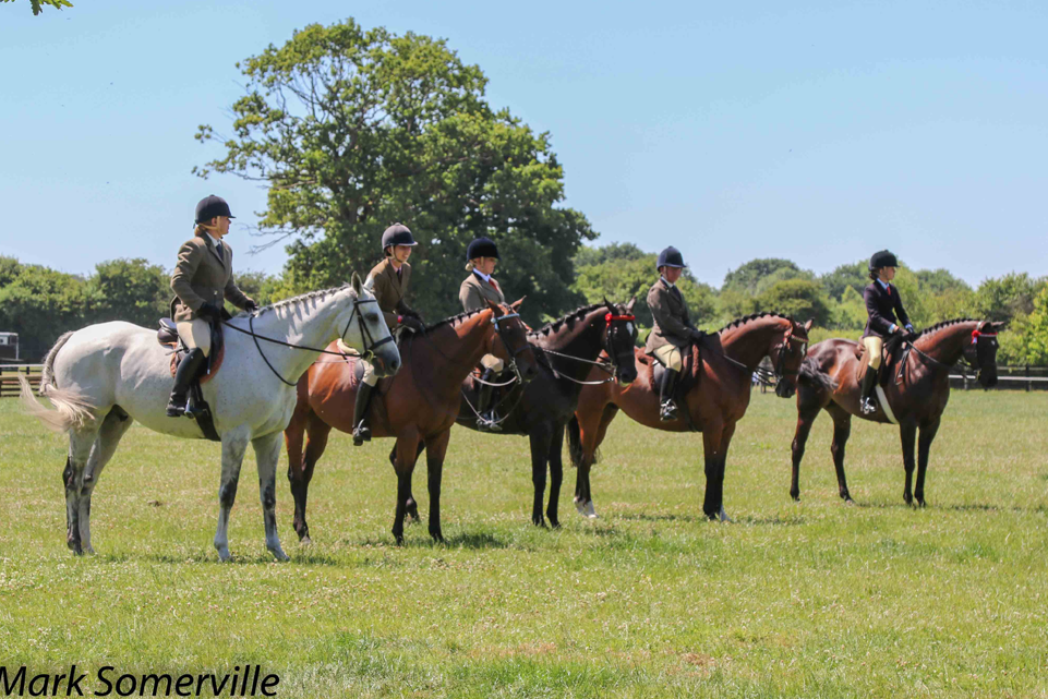 Greatwood 2019 Horse Show