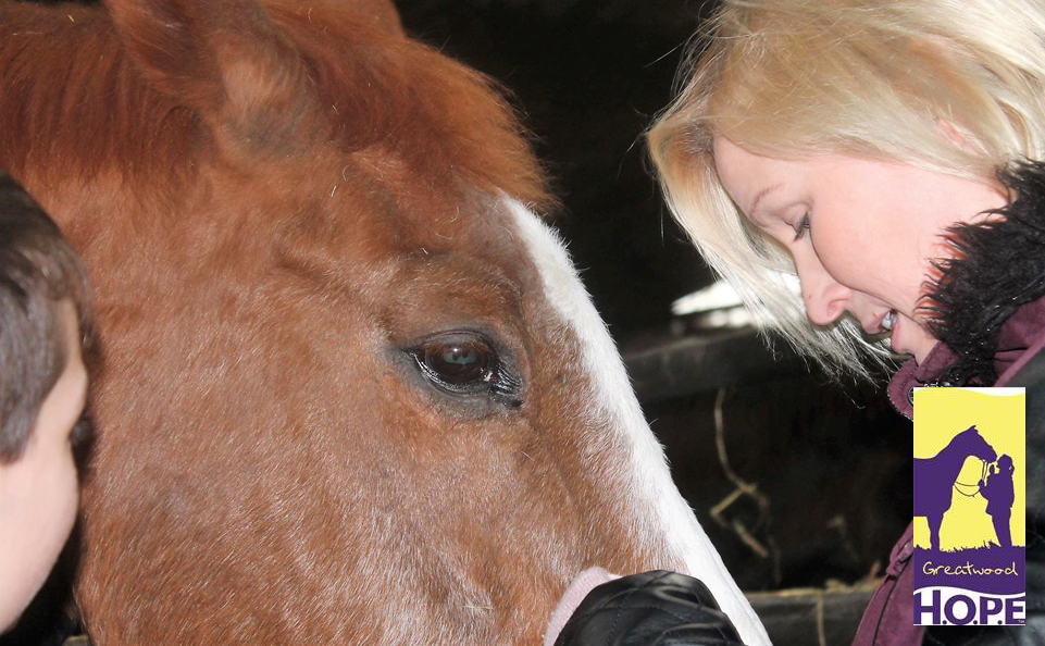 Assisting with the Rehabilitation of Former Racehorses
