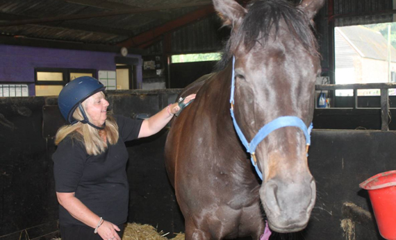 Linda grooming Aldaado at Greatwood Charity